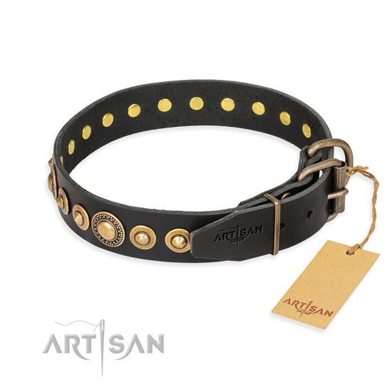 """Gold Mine"" FDT Artisan Black Leather Dogue de Bordeaux Collar with Amazing Bronze-Plated Round Studs"