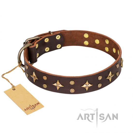 'High Fashion' FDT Artisan Embellished Brown Leather Dogue de Bordeux Collar
