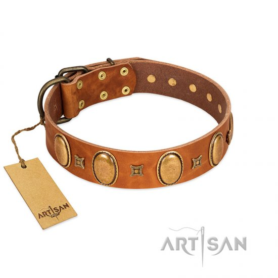 """Glossy Autumn"" Designer Handmade FDT Artisan Tan Leather Dogue de Bordeaux Collar with Ovals and Studs"