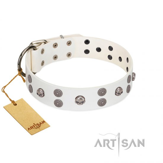 """Edgy Look"" FDT Artisan White Leather Dogue de Bordeaux Collar with Silver-like Skulls"