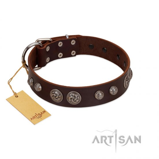 """Choco Brownie"" FDT Artisan Brown Leather Dogue de Bordeaux Collar Adorned with Silver-Like Conchos"