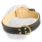 Royal Nappa Padded Hand Made Leather Dogue de Bordeaux Collar