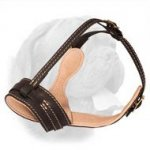 Royal Integrity Dogue de Bordeaux Nappa Padded Leather Muzzle