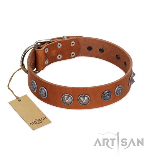 """Silver Necklace"" Incredible FDT Artisan Tan Leather Dogue de Bordeaux Colar with Silver-Like Adornments"