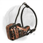 "Hand-Painted Leather ""Magma"" Style Dogue de Bordeaux Muzzle"