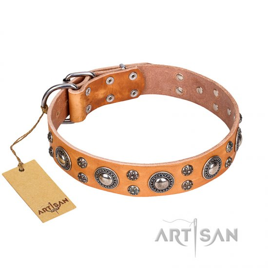 'Extra Sparkle' FDT Artisan Handcrafted Dogue de Bordeaux Tan Leather Dog Collar