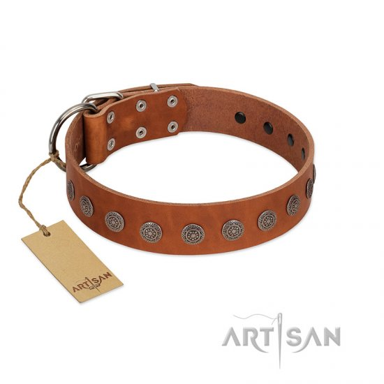 """Lucky Star"" Handmade FDT Artisan Designer Tan Leather Dogue de Bordeaux Collar with Round Plates"