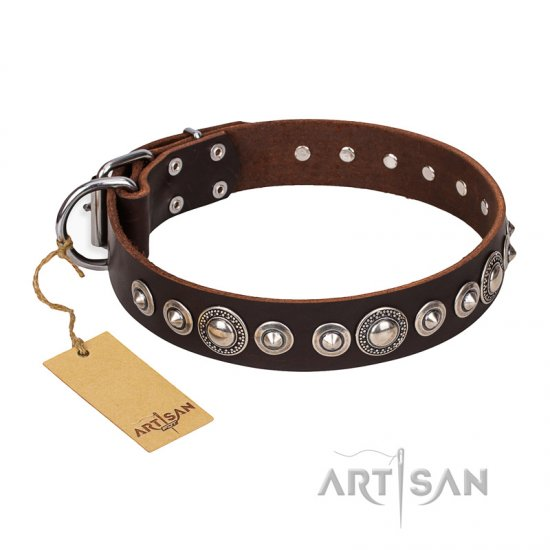 """Step and Sparkle"" FDT Artisan Glamorous Studded Brown Leather Dogue de Bordeaux Collar"