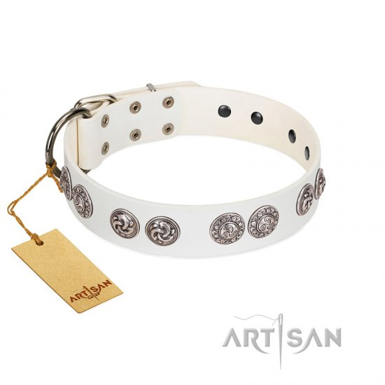 """Eye Candy"" Appealing FDT Artisan White Leather Dogue de Bordeaux Collar with Chrome Plated Medallions"