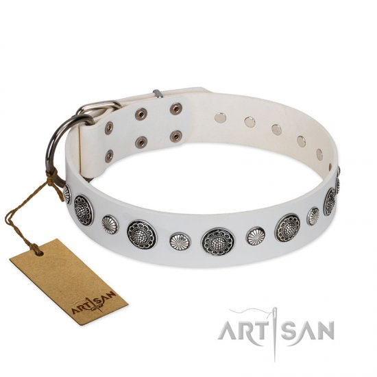 """Fluff-Stuff Beauty"" FDT Artisan White Leather Dogue de Bordeaux Collar with Silver-like Studs and Conchos"