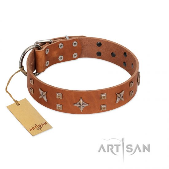 """Dreamy Gleam"" FDT Artisan Tan Leather Dogue de Bordeaux Collar Adorned with Stars and Squares"