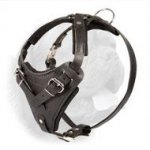 Exclusive Handcrafted Leather Harness for Protection or Agitation Work