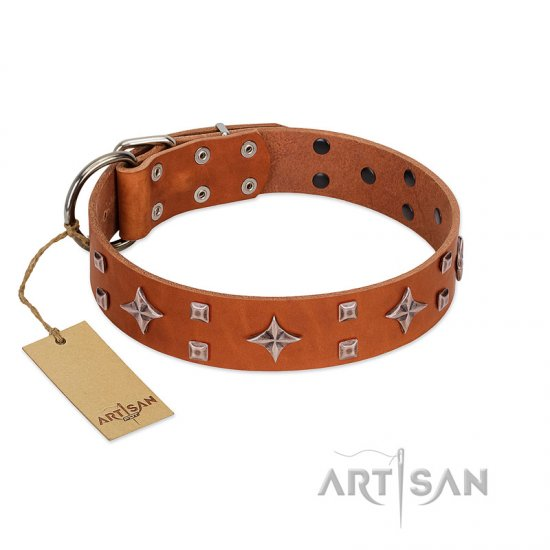 """Tawny Beauty"" FDT Artisan Tan Leather Dogue de Bordeaux Collar Adorned with Stars and Tiny Squares"