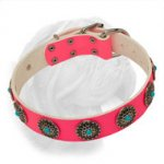 High Grade Pink Dogue de Bordeaux Collar