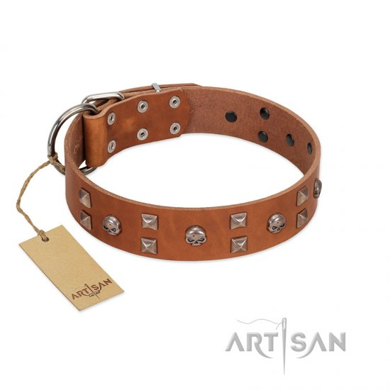"""Enchanted Skulls"" FDT Artisan Tan Leather Dogue de Bordeaux Collar with Chrome Plated Skulls"