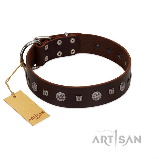 """Pure Sensation"" Exclusive FDT Artisan Brown Leather Dogue de Bordeaux Collar with Fancy Brooches and Studs"