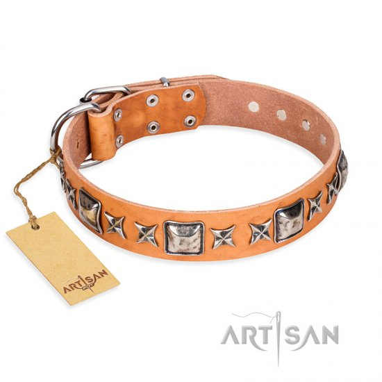 """Glamour Finery"" FDT Artisan Female Dogue de Bordeaux collar of natural leather with stylish old-looking circles"