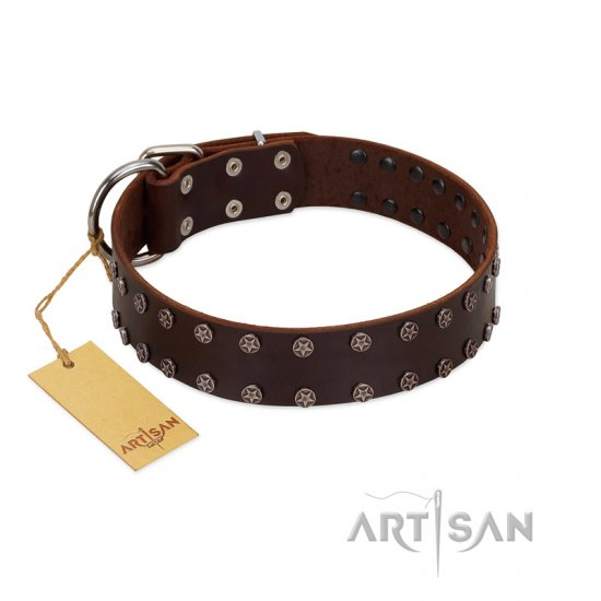 """Star Party"" Handmade FDT Artisan Brown Leather Dogue de Bordeaux Collar with Silver-Like Studs"