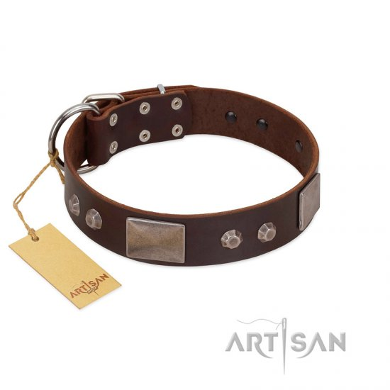 """Stone Stars"" Stylish Handmade FDT Artisan Brown Leather Dogue de Bordeaux Collar"