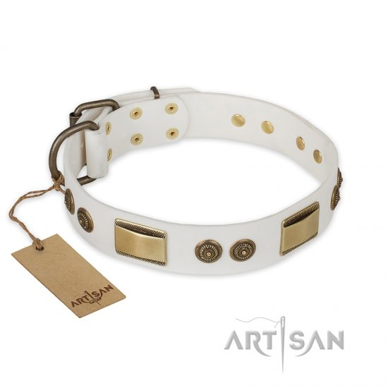 """Golden Avalanche"" FDT Artisan White Leather Dogue de Bordeaux Collar with Old Bronze Look Plates and Circles"