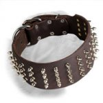 Extra Wide Dogue de Bordeaux Spiked Collar