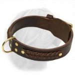 Wide 2 Ply Fur Saving Leather Collar with Braids for Dogue de Bordeaux