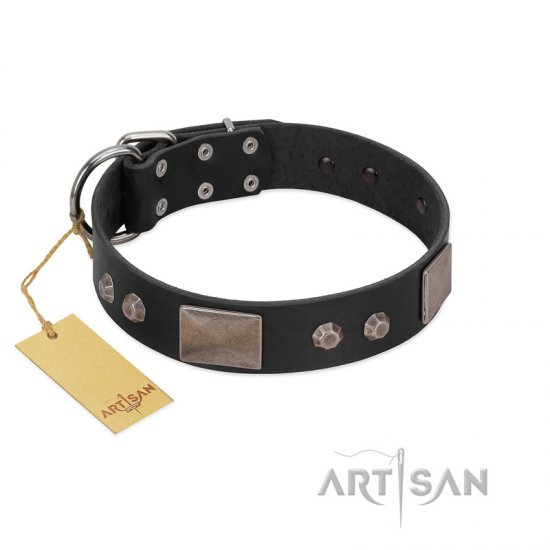 """Square Stars"" Modern FDT Artisan Black Leather Dogue de Bordeaux Collar with Square Plates and Studs"