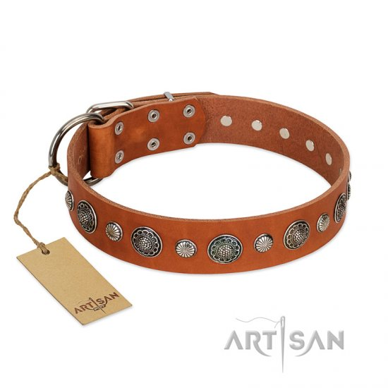 """Natural Beauty"" FDT Artisan Tan Leather Dogue de Bordeaux Collar with Shining Silver-like Studs"