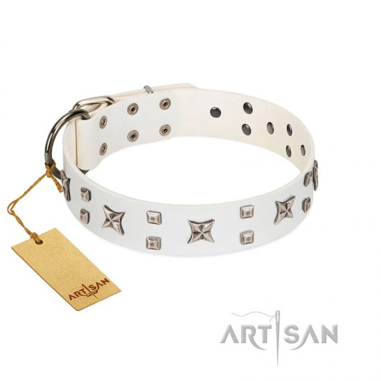 """Star Patrol"" FDT Artisan White Leather Dogue de Bordeaux Collar Adorned with Stars and Studs"