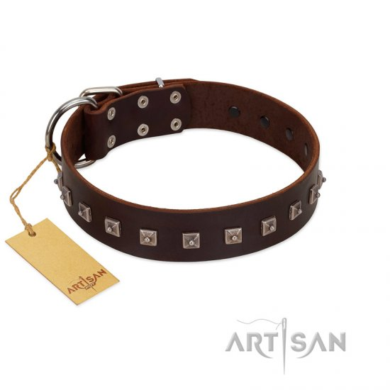 """Kingly Grace"" FDT Artisan Brown Leather Dogue de Bordeaux Collar with Silver-like Dotted Studs"