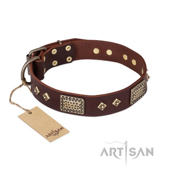 """Loving Owner"" FDT Artisan Decorated Leather Dogue de Bordeaux Collar with Plates and Studs"