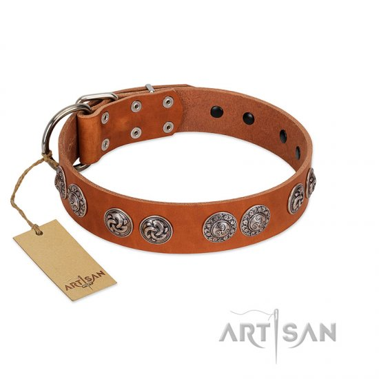 """Woofy Majesty"" FDT Artisan Tan Leather Dogue de Bordeaux Collar with Round Silver-like Plates"