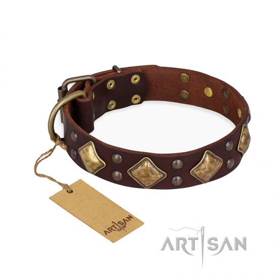 """Golden Square"" FDT Artisan Brown Leather Dogue de Bordeaux Collar with Large Squares"