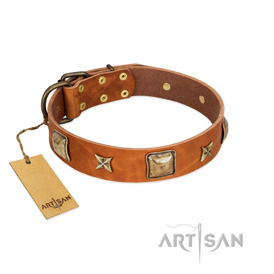 """Celtic Tunes"" FDT Artisan Tan Leather Dogue de Bordeaux Collar Adorned with Stars and Squares"