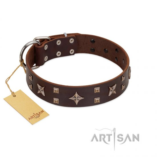 """Stars in Sands"" Modern FDT Artisan Brown Leather Dogue de Bordeaux Collar with Studs and Stars"