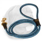 Cord Nylon Dog Leash for Dogue de Bordeaux