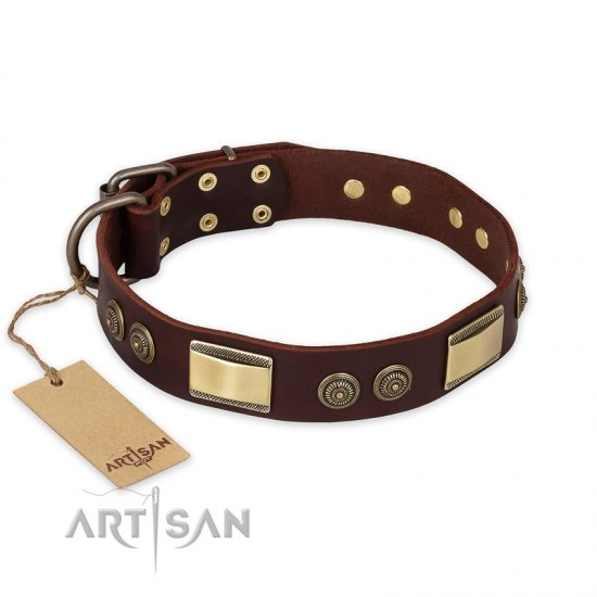 """Golden Stones"" FDT Artisan Brown Leather Dogue de Bordeaux Collar with Old Bronze Look Plates and Circles"