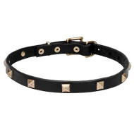 """Modern Style"" Leather Dogue de Bordeaux Collar"