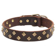 Dogue de Bordeaux Leather Collar with Brass Pyramids