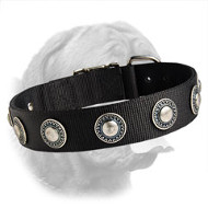 Nylon Dogue de Bordeaux Collar with Silver Conchos