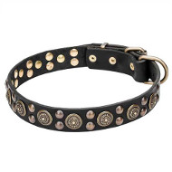 """Boho Style"" Leather Dogue de Bordeaux Collar with Massive Brass Decorations"