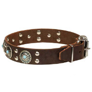 'Ace Style' Leather Dogue de Bordeaux Collar with Silver-like Decor