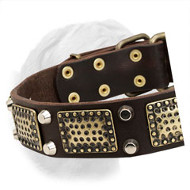 High-Quality Leather Dogue de Bordeaux Collar with Old Brass Massive Plates