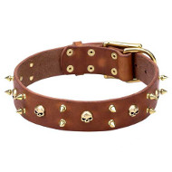 Genuine Leather Dogue de Bordeaux Collar with Brass Spikes and Skulls