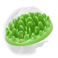 Interactive Feeder for Dogue de Bordeaux GREEN LAWN