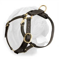 Dogue de Bordeaux Lightweight Leather Harness for Tracking and Walking