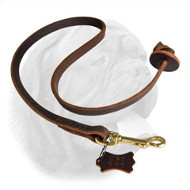 Pocket Leather Nylon Dogue de Bordeaux Leash
