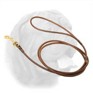 Perfectly Looking Round Leather Dogue de Bordeaux Leash for Dog Shows