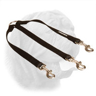 Nylon Coupler Dogue de Bordeaux Leash for Walking Three Dogs