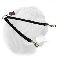 Practical Nylon Dogue de Bordeaux Coupler for Walking 2 Dogs
